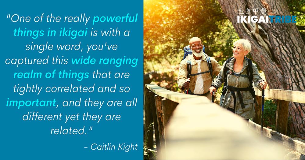 Powerful things in ikigai
